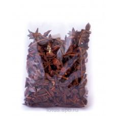 Бадьян сушеный (100 гр)