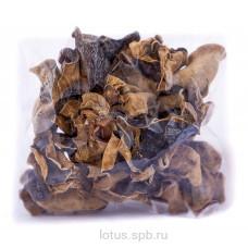 Грибы древесные сушеные (100 гр)